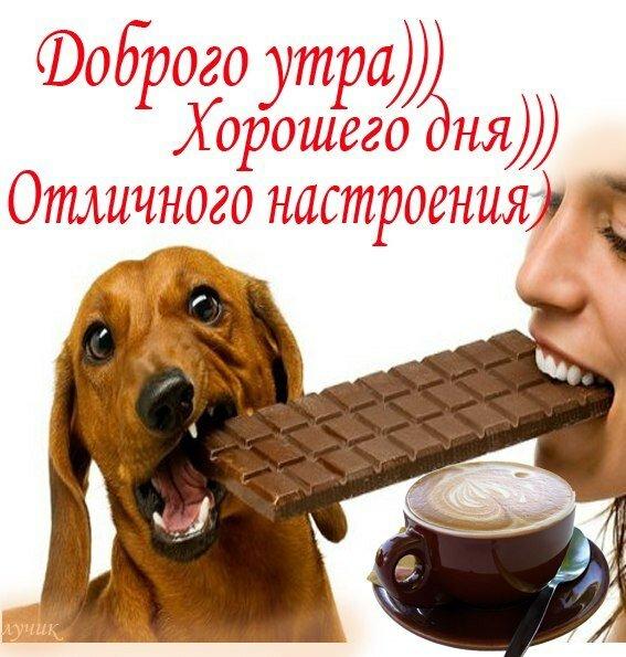 http://love-image.ru/utron/46.jpg